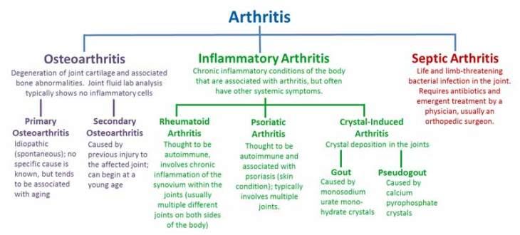 Arthritis Info Chart